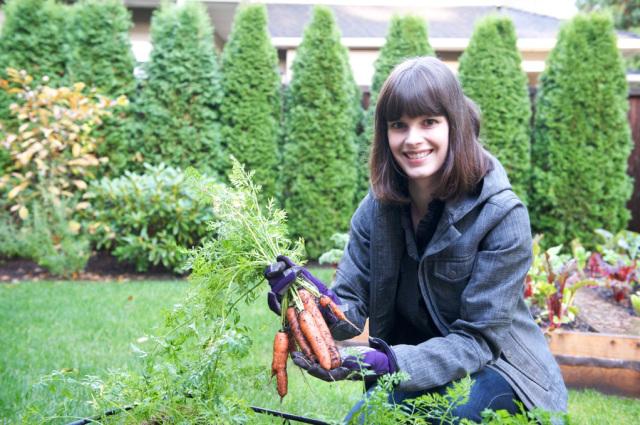 Typowe narzędzia do ogrodu