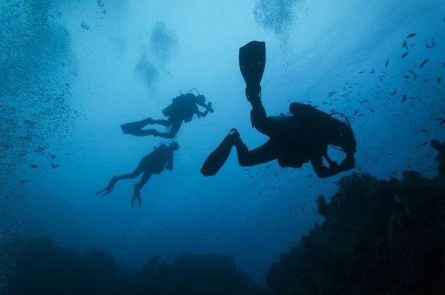 Rekordy w nurkowaniu – sporty ekstremalne